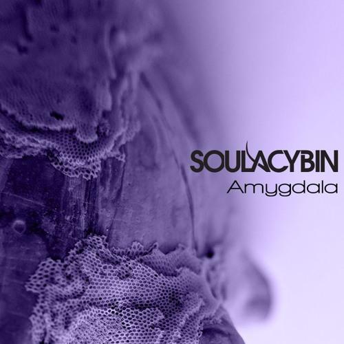 "Trippy track: Soulacybin's ""Amygdala"""