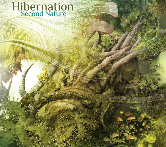 "Throwback to Seb Taylor's downtempo ""Hibernation"""